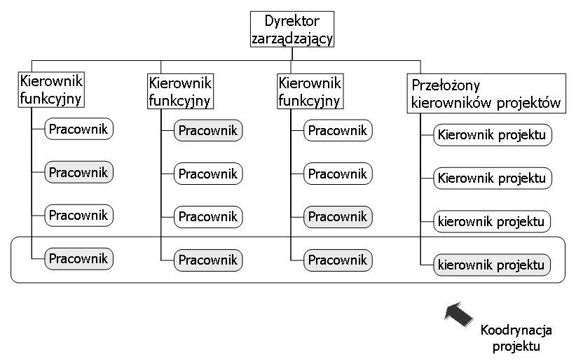 Rys.11. Struktura macierzowa silna
