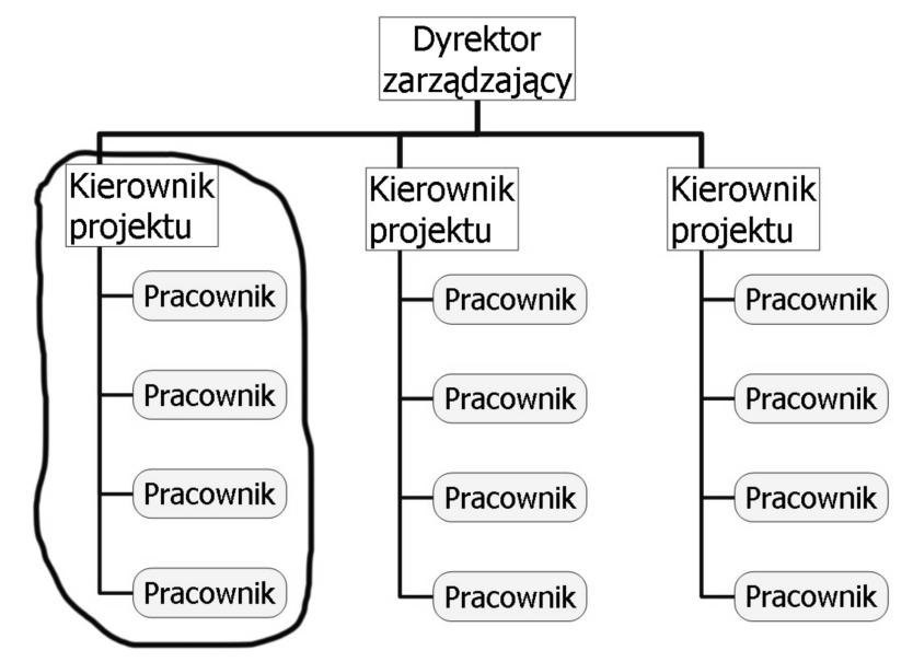 Rys.9 Struktura macierzowa