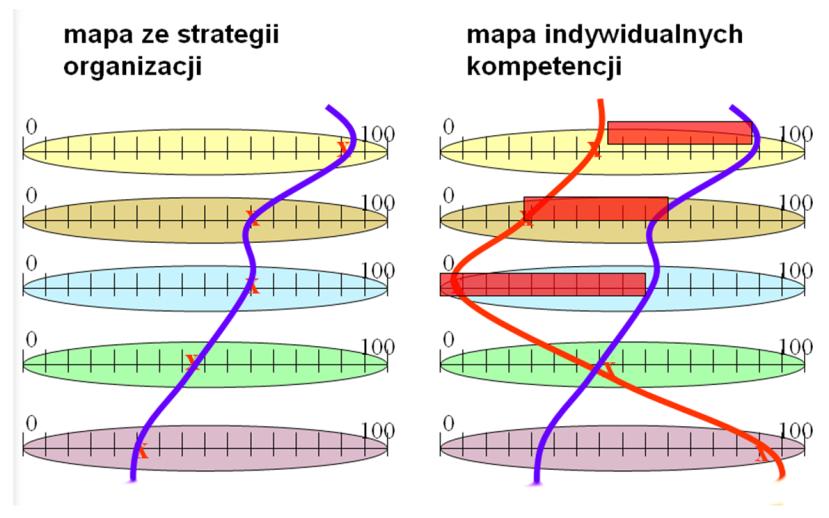 Rysunek 1. Mapa ścieżki kompetencji pracowniczych